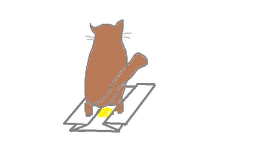 猫トイレシーツ
