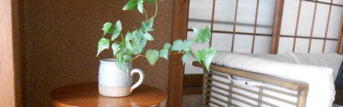 和室にソファーと植物