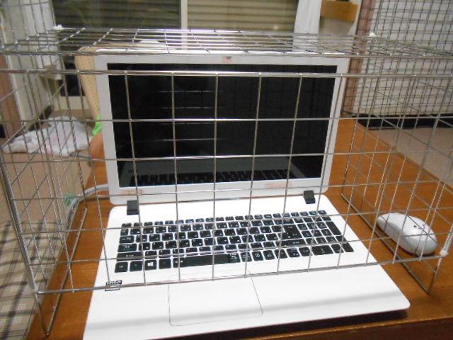 パソコン 猫 ガード