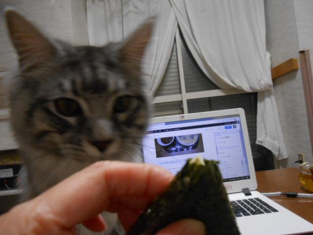 猫とチーズ海苔